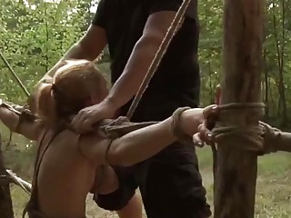 Babes tied up and fucked real hard in the forest