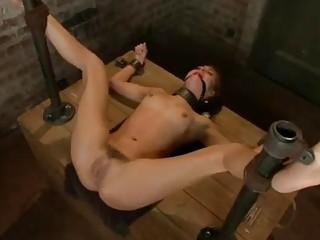 Skinny bound bitch Riley Reid brutally fucked and toyed BDSM
