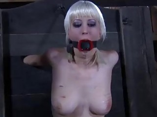 BDSM slut Cherry Torn bound on the wall and fucked
