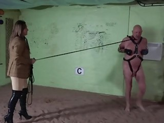 Submissive bald dude forced to walk and show off cock